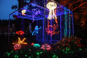 Shore Acres Christmas Lights 2019 Coos Bay Holiday Lights | Shore Acres State Park